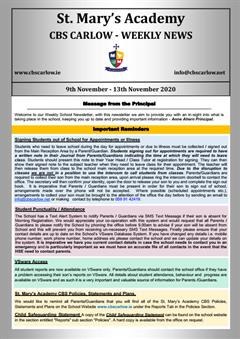 Weekly School Newsletter - 13th November 2020